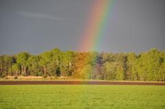 het was genieten op zondagavond van prachtige regenbogen #buienradar