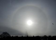 Een Halo van enorme afmetingen! Rondje ijskristallen  rondom de Zon, voorlopig zijn we nog niet van de kou af!  #buienradar
