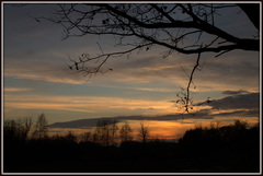 zonsondergang in het natuurgebied: ''het vlakbroek'' #buienradar