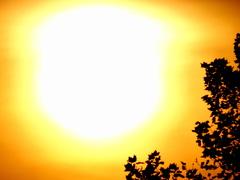 Eindelijk eens Warmte in het weekend, want de werkenden kwamen er in het weekeinde maar bekaaid af qua Zon! Jullie werden al Witheet hè? #buienradar