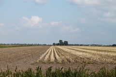 ZO Drenthe 14:15 h 21,5 graden celcius #buienradar