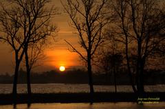 Een mooie Zonsopkomst op Zaterdag 29 November! #buienradar