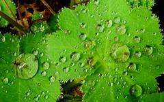 wat licht wisselvallig de eerste regen beetje zaterdagmorgen #buienradar