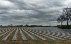 ook veel bewolkte tijden en wind ook #buienradar