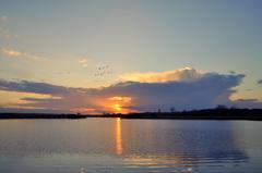 zonsondergang achter een licht winters buitje op 31 januari boven zuidoost brabant #buienradar
