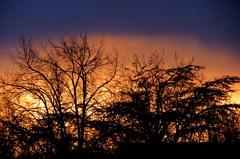 Zonsondergang  op  31-01. #buienradar