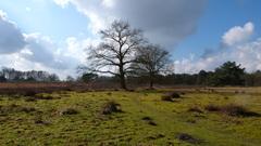 Mooie lucht met wolken in Drenthe #buienradar