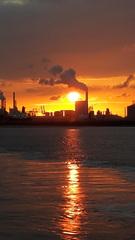 Zonsondergang op de maasvlakte wat ging ie nog mooi onder niet meer verwacht  #buienradar
