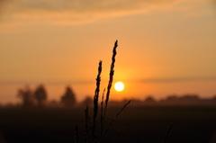 een prachtige start van de herfst boven zuidoost Brabant #buienradar