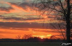 Fraaie zonsondergang op vrijdag 12 Februari in Noord-Limburg #buienradar