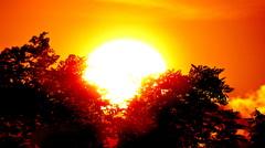 Deze laatste Juli dag, is de Zon voor Julie!... Dag! #buienradar