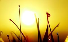 zonnig 1 nov #buienradar