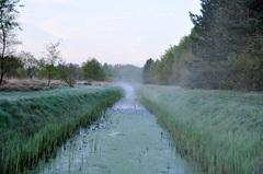 vorst aan de grond met een beetje slootmist op dinsdagochtend in zuidoost Brabant #buienradar