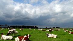 Natuurlijk was dit het weer van gisteren! #buienradar