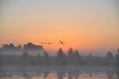 een prachtig begin van een nieuwe dag in zuidoost Brabant #buienradar
