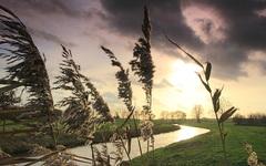 steeds meer wind en lichte zon zaterdagmiddag waterkou #buienradar
