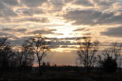 de zon gaat het langzaam verliezen van de wolken op zaterdagochtend #buienradar
