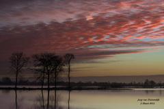 Op Donderdag 3 Maart voordat de Zon opkwam in de Reeuwijkse regio was er deze prachtige lucht te zien! #buienradar