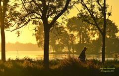 Voordat de zon opkwam vanmorgen vroeg op 29 Augustus,was deze wandelaar al op pad in het wat nevelige Reeuwijkse plassen gebied en genoot van de natuur om zich heen! #buienradar