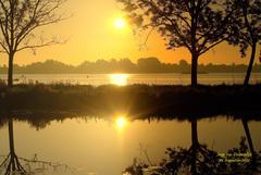 """Deze """"Gouden"""" zonsopkomst op deze Zaterdag 29 Augustus was er een met veel nevel op het water van de Reeuwijkse plassen! #buienradar"""