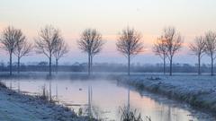 de zon komt op boven de mistige witte wereld om 8.25 uur in het rivierengebied   #buienradar