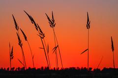 Zonsondergang 30-06-2015 #buienradar #Zomer