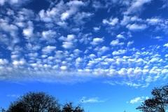 1 november 2014 ,de dag begint met vrolijke wolkenpartijen. #buienradar