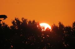Een  zonnige  start  van  1 Sept. #buienradar