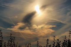 Sfeervolle lucht vanmiddag! (Robbenoordbos 28-9-2014) #buienradar