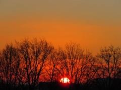 De zon begint te klimmen. 11-2-8 uur #buienradar
