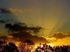 Fraaie  zonsopkomst op de laatste  zaterdag van November. #buienradar