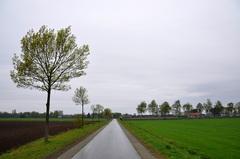 zwaar bewolkt en druilerig op zaterdagochtend in zuidoost Brabant #buienradar