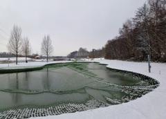 Winterdag bij de kweekvijver in Schinveld. #buienradar