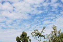 07/07/2015 De eerste wolken komen binnen drijven. #buienradar