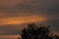 Vanochtend nog een beetje kleur aan de dag. #buienradar