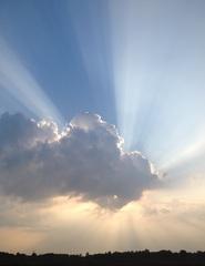 Prachtig op de Hilversumse hei! #natuur #herfst #zomer #bewolking #zon #buienradar