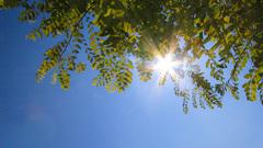 Strakblauwe lucht en volop zon om 13.00 uur in het rivierengebied  #buienradar