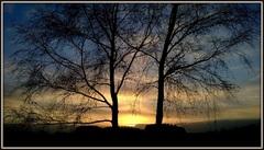 Zonsondergang op zondagavond in Noord-Limburg #buienradar