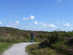 bloeiende heide in de duinen in natuurgebied Zwanenwater/Callantsoog en prachtig weer #buienradar