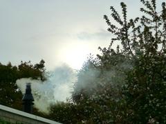 Vrijdagavond 19.15 u. de kachel brandt op volle toeren, het  is dan ook maar 8 graden. De appelboom weet niet of hij nu wel of niet moet doorgaan met bloeien en die lichte plek in de lucht, dat is de zon die zich nog even heel wazig laat zien. #buienradar