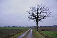 zwaar bewolkt en regenachtig op maandagochtend in zuidoost Brabant  #buienradar