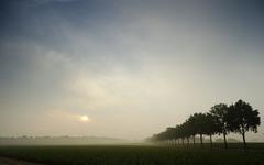 wegtrekkende mist en de zonsopkomst met sluierlucht #buienradar