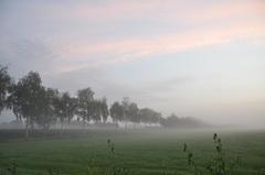 licht bewolkt met mistbanken voor zonsopkomst in zuidoost Brabant #buienradar