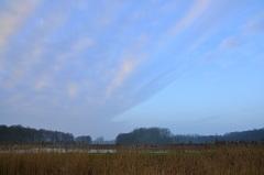 vrij snel komen er op dinsdagochtend opklaringen binnenschuiven boven zuidoost Brabant #buienradar