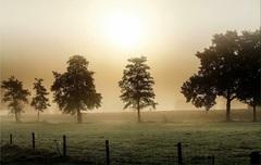 Mistige ochtend in Zenderen Ov #buienradar