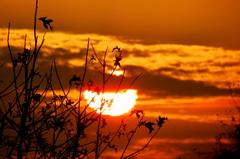 Zonsondergang op 10-10- #buienradar