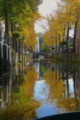 Fraaie weerspiegeling van de bomen in herfsttooi in het water van de Korte Gracht in Amersfoort. #buienradar