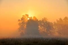 zon en mist op zondagochtend in zuidoost brabant #buienradar
