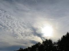 Zondag 26 oktober 2014. Aparte kleuren in de lucht, blauw/roze.  Condens strepen van vliegtuigen lijken extra fel.  #buienradar