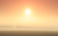 zon brandt door de dikke mist  #buienradar